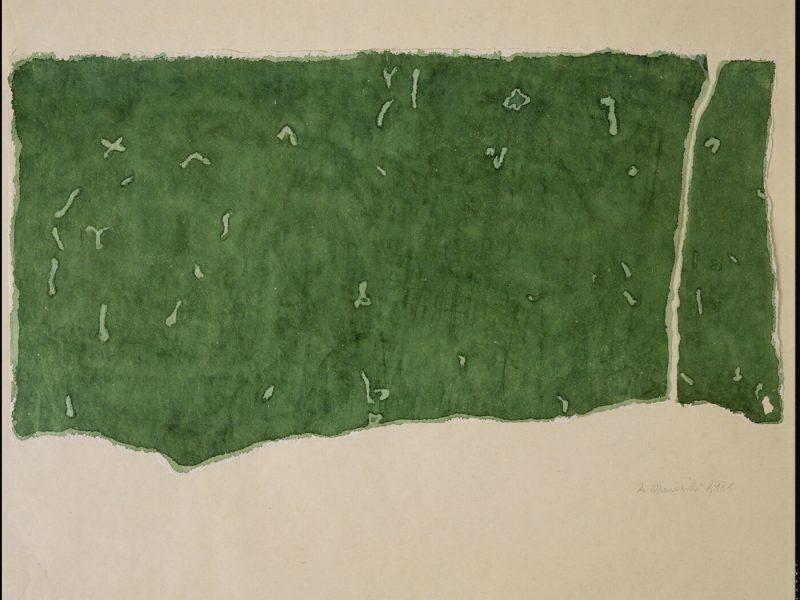 Carte di Riso acquerello su carta di riso e strappo su carta da stampa